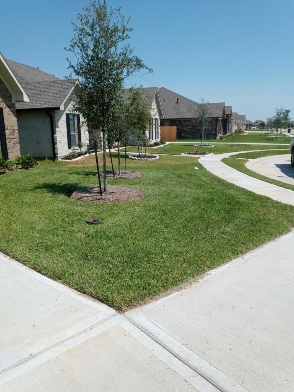 Lawn Care Service in Dickinson, TX, 77539