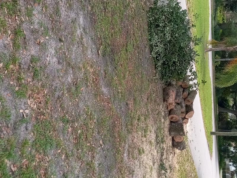 Lawn Care Service in Clearwater, FL, 33756
