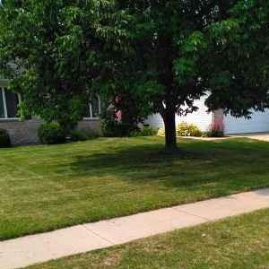 Lawn Care Service in Springfield, IL, 62702