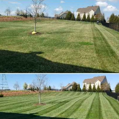 Lawn Care Service in Indian Land, SC, 29707