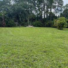 Lawn Care Service in Port Charlotte, FL, 34240