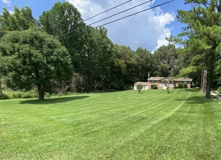 Lawn Care Service in Chapmansboro, TN, 37035