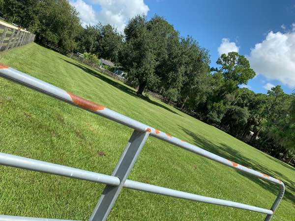 Lawn Care Service in Fort Myers, FL, 33919