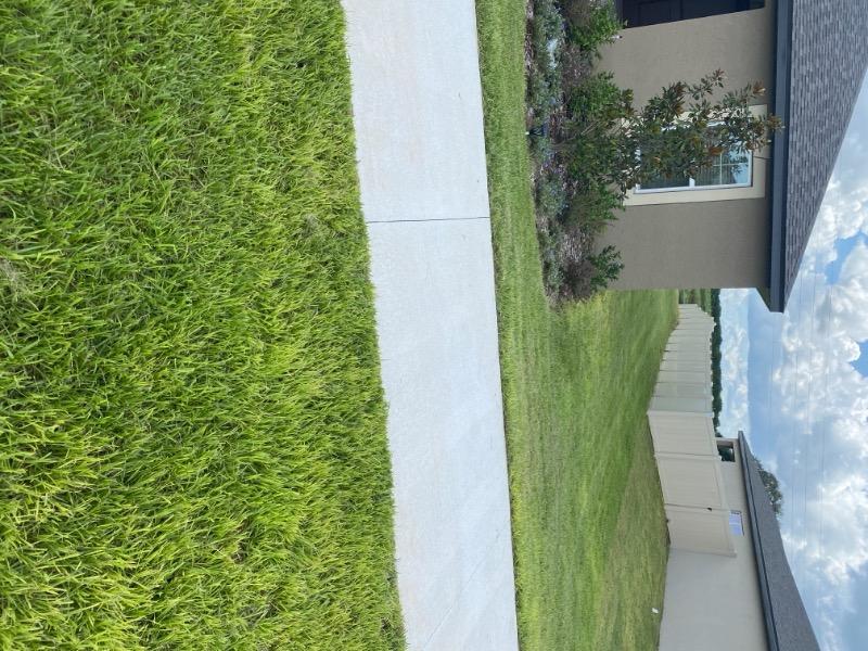 Lawn Care Service in Winter Haven, FL, 33881