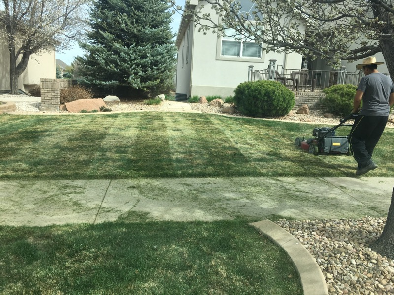 Lawn Care Service in Evans, CO, 80620