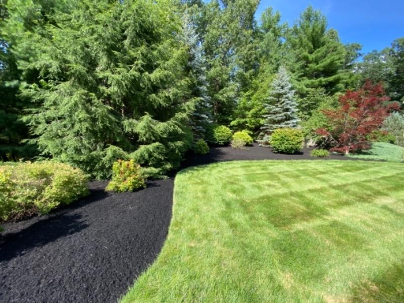 Lawn Care Service in Northborough, MA, 01532