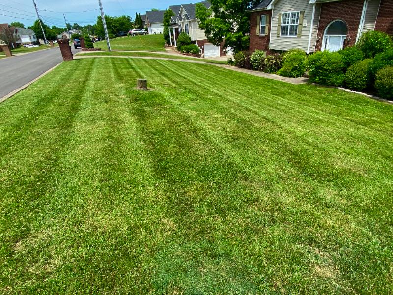 Lawn Care Service in Adams, TN, 37040