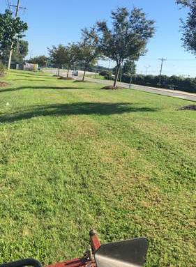 Lawn Care Service in Charlotte, NC, 28210