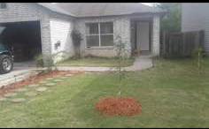 Lawn Care Service in San Antonio, TX, 78239