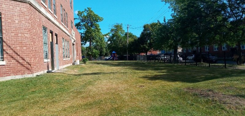 Lawn Care Service in Chicago, IL, 60620