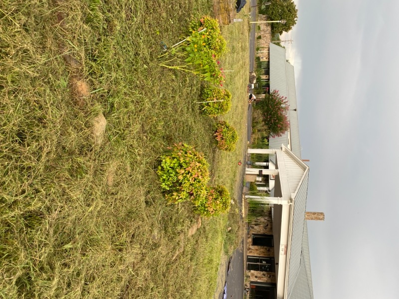 Lawn Care Service in Chattanooga, TN, 37404