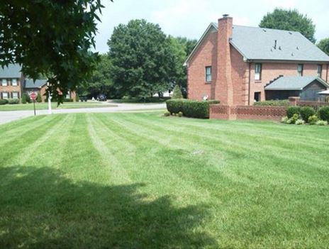 Lawn Mowing Contractor in Murfreesboro, TN, 37130