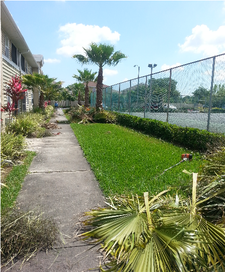 Lawn Mowing Contractor in Tampa, FL, 33613