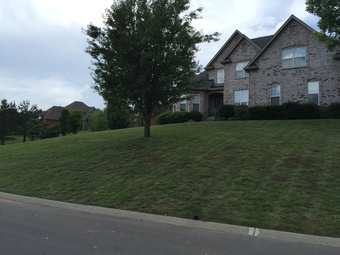 Lawn Mowing Contractor in Fairview, TN, 37062