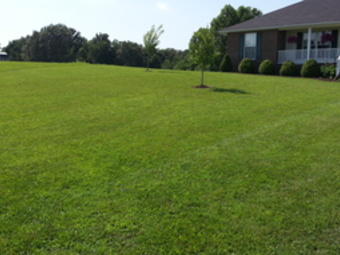 Lawn Mowing Contractor in Cottontown, TN, 37048