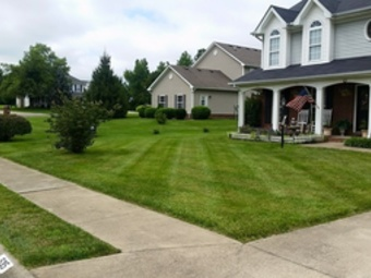 Lawn Mowing Contractor in Valrico, FL, 33594