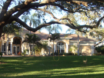 Lawn Mowing Contractor in Tarpon Springs, FL, 34688