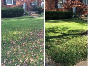 Lawn Mowing Contractor in Florissant, MO, 63033