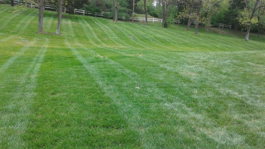 Lawn Mowing Contractor in St. Louis , MO, 63116