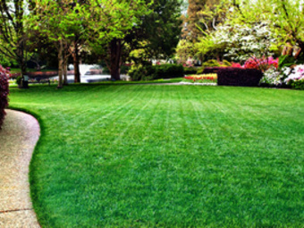 Lawn Mowing Contractor in Nashville, IL, 62263