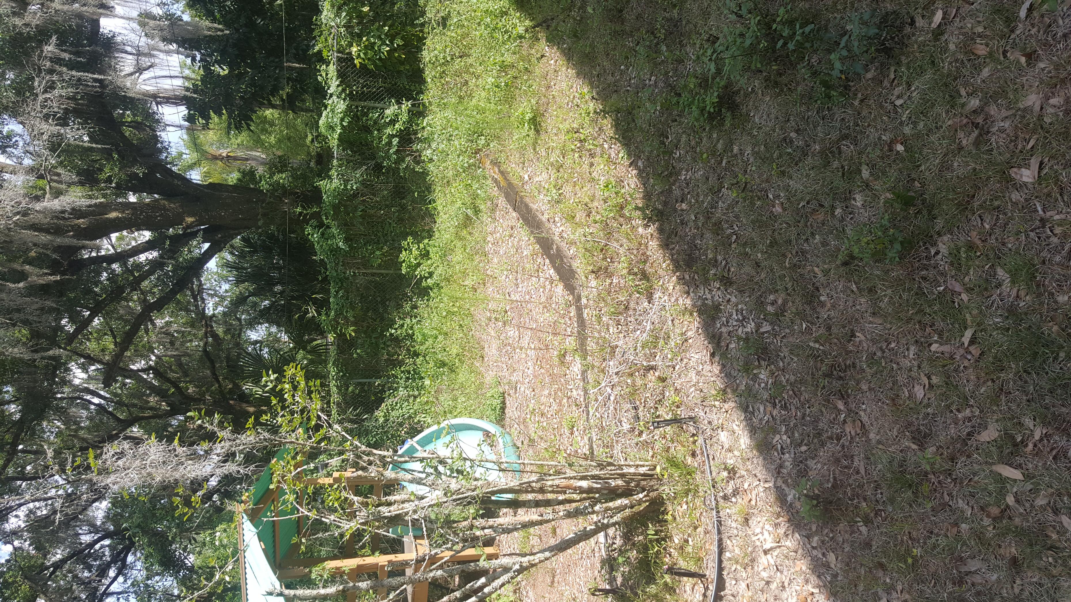 Lawn Mowing Contractor in Valrico, FL, 33594