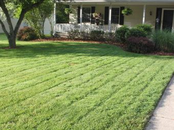 Lawn Mowing Contractor in Atlanta, GA, 30307