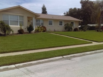 Lawn Mowing Contractor in Pinellas Park, FL, 33781