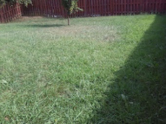 Lawn Mowing Contractor in Mount Holly, NC, 28120