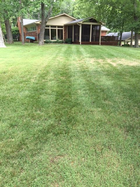 Lawn Mowing Contractor in Nashville, TN, 37205