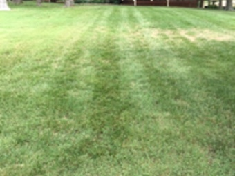 Lawn Mowing Contractor in Nashville, TN, 37205
