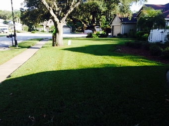 Lawn Mowing Contractor in Lutz, FL, 33559