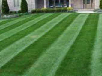 Lawn Mowing Contractor in St Louis , MO, 63128