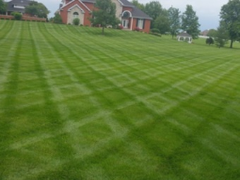 Lawn Mowing Contractor in Nashville, TN, 37214