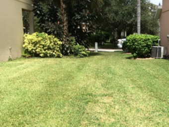 Lawn Mowing Contractor in Riverview , FL, 33569