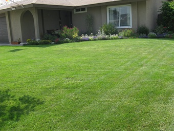 Lawn Mowing Contractor in Atlanta, GA, 30354