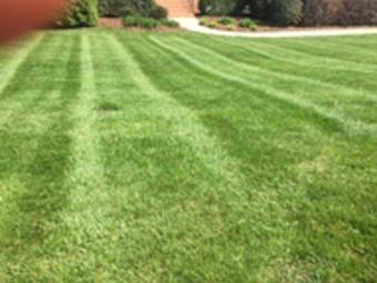 Lawn Mowing Contractor in Sophia, NC, 27350