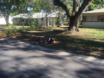 Lawn Mowing Contractor in Winter Garden, FL, 34787