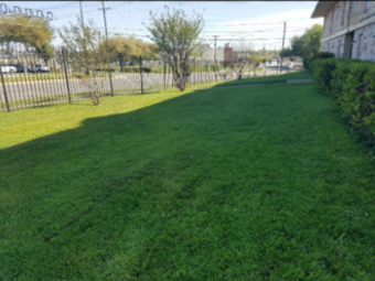 Lawn Mowing Contractor in Dallas, Tx, 75224