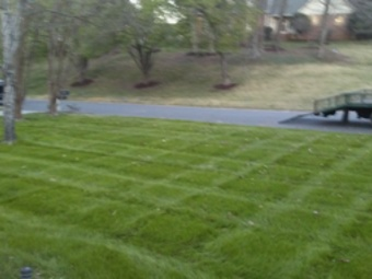 Lawn Mowing Contractor in Charlotte, NC, 28216