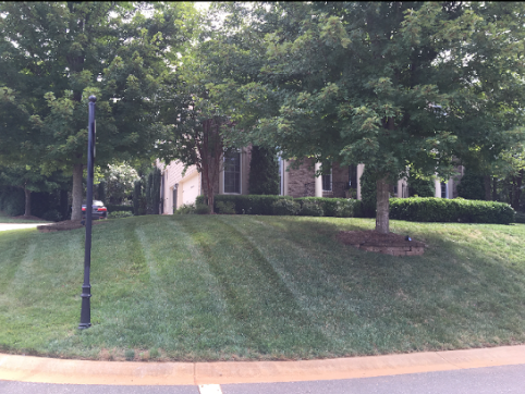 Lawn Mowing Contractor in Charlotte, NC, 28207