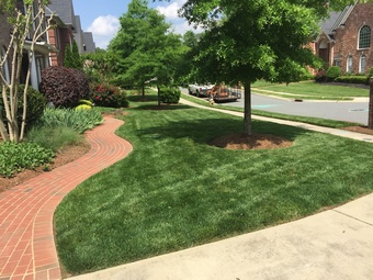 Lawn Mowing Contractor in Minthill , NC, 28215