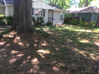Lawn Mowing Contractor in Charlotte, NC, 28209