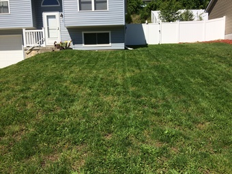 Lawn Mowing Contractor in Affton, MO, 63123