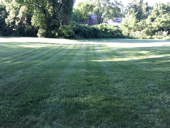 Lawn Mowing Contractor in Saint Louis, MO, 63136