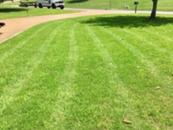Lawn Mowing Contractor in Nolensville , TN, 37135