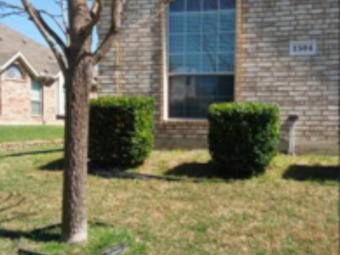 Lawn Mowing Contractor in Dallas , TX, 75051