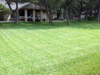 Lawn Mowing Contractor in San Antonio, TX, 78217