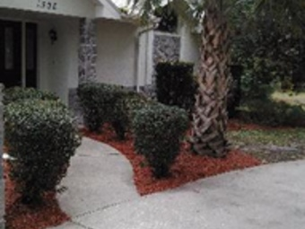 Lawn Mowing Contractor in Spring Hill, FL, 34611