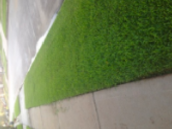 Lawn Mowing Contractor in Houston, TX, 77088