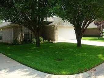 Lawn Mowing Contractor in Houston, TX, 77053
